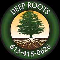 DEEP ROOTS Quality Tree Services