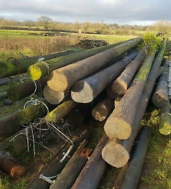 WANTED: TELEGRAPH POLES / OFFCUTS LEEDS AREA
