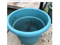 40 cms Green pot