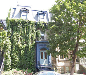 Mcgill Ghetto area, Plateau-Mount-Royal, MTL, Parking, Furnished