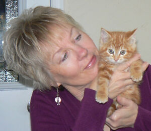 Learn Reiki for yourself, family, friends and pets Cobourg ON Kawartha Lakes Peterborough Area image 8