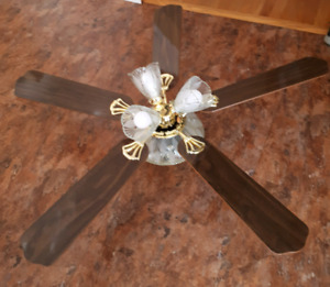 "Canarm brand 52"" 5 blade Ceiling Mount Fan-brand new $60"