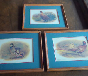3 Matching Frames, Partridge, Pheasant, Red Grouse