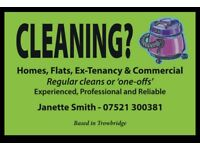 DO YOU NEED A RELIABLE CLEANER?