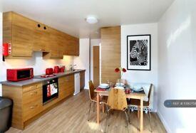 4 bedroom flat in Southampton, Southampton, SO14 (4 bed) (#1090758)