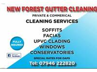WINDOW & GUTTER CLEANING hythe