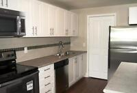 Experience Better Living in a NEW Renovated 2 Bedroom!