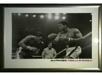 Ali/Frasier Framed Boxing Print