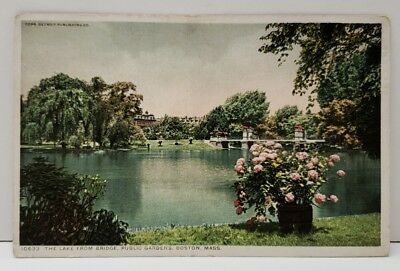 - Boston Massachusetts Lake From Bridge Public Gardens Postcard Tinted Photo 1915