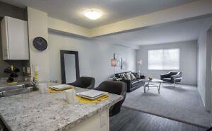Willowbrook 1BR Apartment Suites | Pet Friendly