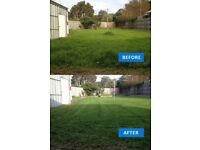 Gardening services - Grass cutting - Local gardener - Tidy up - Lawn mowing - Harrow - Watford