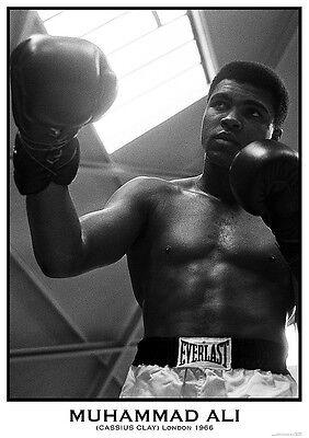 Poster MUHAMMAD ALI - Cassius Clay - London 1966  ca60x85cm NEU 58743
