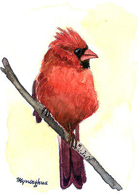 ACEO Limited Edition  - A beautiful bird