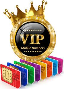 Vanity VIP 226 numbers