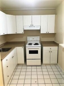Newly Renovated Close to Downtown - All Inclusive