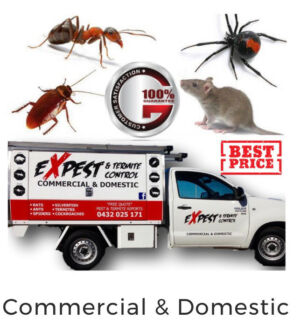 PEST AND  TERMITE CONTROL