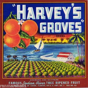 Cocoa Florida Harvey's Groves Orange Citrus Fruit Crate Label Art Print