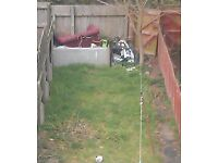 ** LOOKING FOR SOMEONE TO REMOVE GARDEN RUBBISH ASAP **