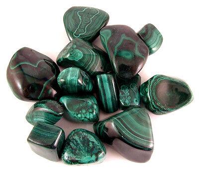 Malachite Tumbled Gemstones 6 oz.