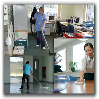 Fantastic commercial cleaning within the budget!