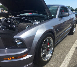 Ford Roush Mustang   Great Deals on New or Used Cars and