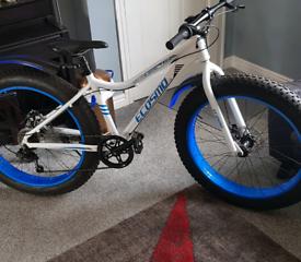 New fat tyres bike mint