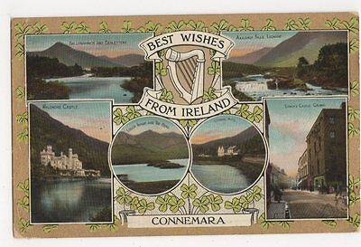 Best Wishes from Ireland, Connemara 1907  Postcard, B107
