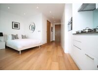 AMAZING 1 BED APARTMENT IN CANARY WHARF E14 - ARENA TOWER EAST INDIA DOCK