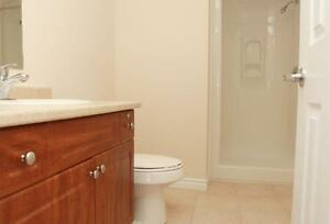 2 BEDROOM/2 BATHS ~ 5 Appliances, In-suite Laundry! (Cambridge) Kitchener / Waterloo Kitchener Area image 13