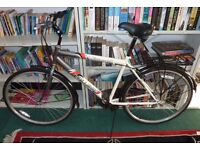 bicycle - Great working condition.