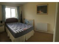 Double Room to rent fully furnished in young professional house