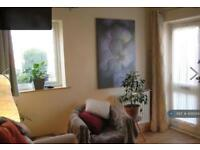 1 bedroom flat in Chesterfield, Chesterfield, S43 (1 bed)