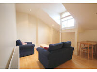 A stunning and modern 1 double bedroom flat on Seven Sisters Road close to Holloway tube