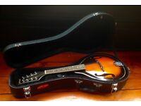 Stag flat backed mandolin