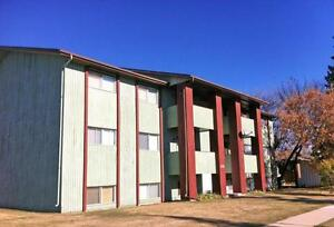Cliff Manor Apartments - 1 Bedroom Apartment for Rent...