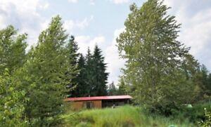 11.2 acres in Meadow Creek