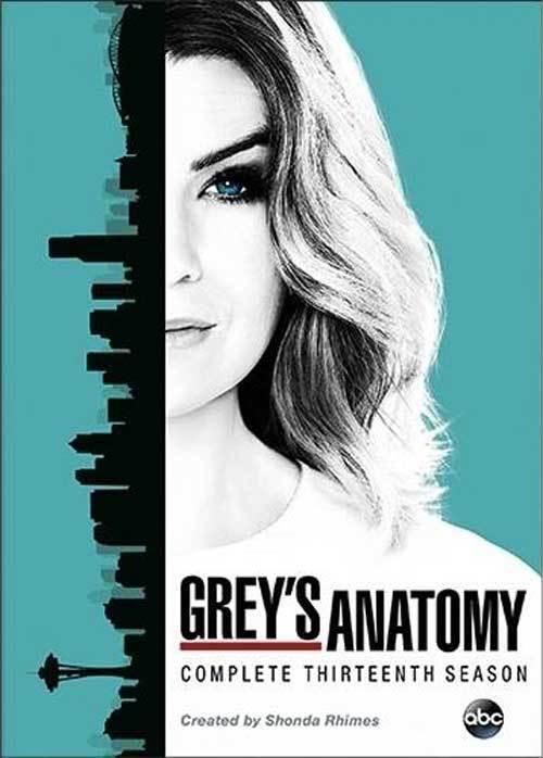 Grey's Anatomy:The Complete Thirteenth Season 13(DVD,2017,6-Disc Set)NEW Greys