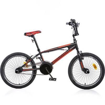 Bicicleta Adulto 20