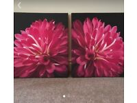 "Set of 2 canvas wall art prints from NEXT 20x20"". Workington Cumbria"