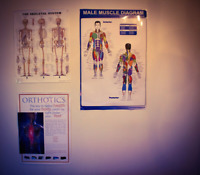 Osteopathy, Massage, and/ or personal training