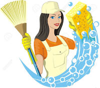 CLEANING LADY (780) 666-8681