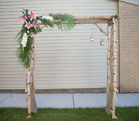 Birch Arch for rent.