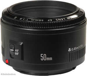 Canon 70d & EF24-105 L IS & Canon 50mm   $1950 Strathcona County Edmonton Area image 5