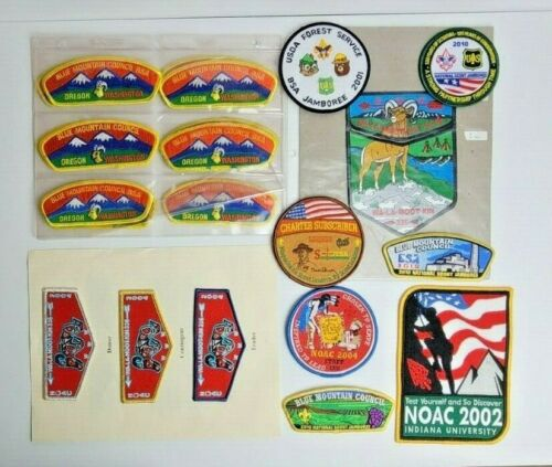 Lot Of 34 Various Boy scout Badges Patches