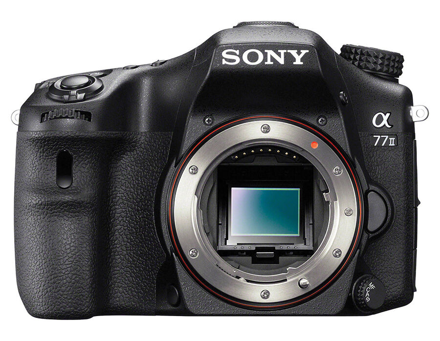 For the Action Photographer - the Sony Alpha A77 II