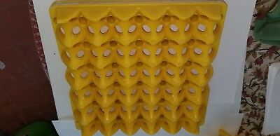 10 Heavy Plastic Egg Tray 30-eggs Lightly Used Yellow 10 X Package 35.00