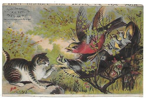 ASTC BLACK TIP SHOES HARTFORD, CT. ANTIQUE ADV VICTORIAN TRADE CARD-CAT & BIRDS