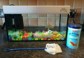 Small goldfish starter set up