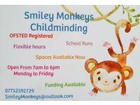 Smiley Monkeys Childminding