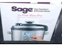 New Sage The Fast Slow Pro(Rep £179)